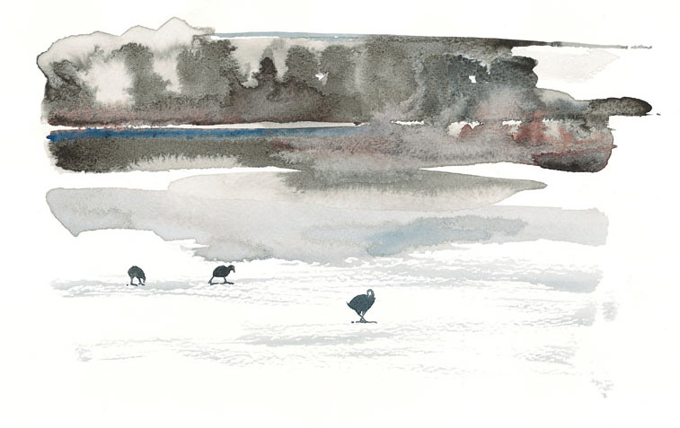Coots walking in a watercolour landscape on ice by artist Jilly Cobbe
