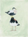 Painting of an Eider Duck atop an Oyster Catcher by artist Jilly Cobbe